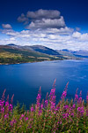 View of Lochcarron in Scotland