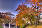 Duthy Park in autumn, Aberdeen